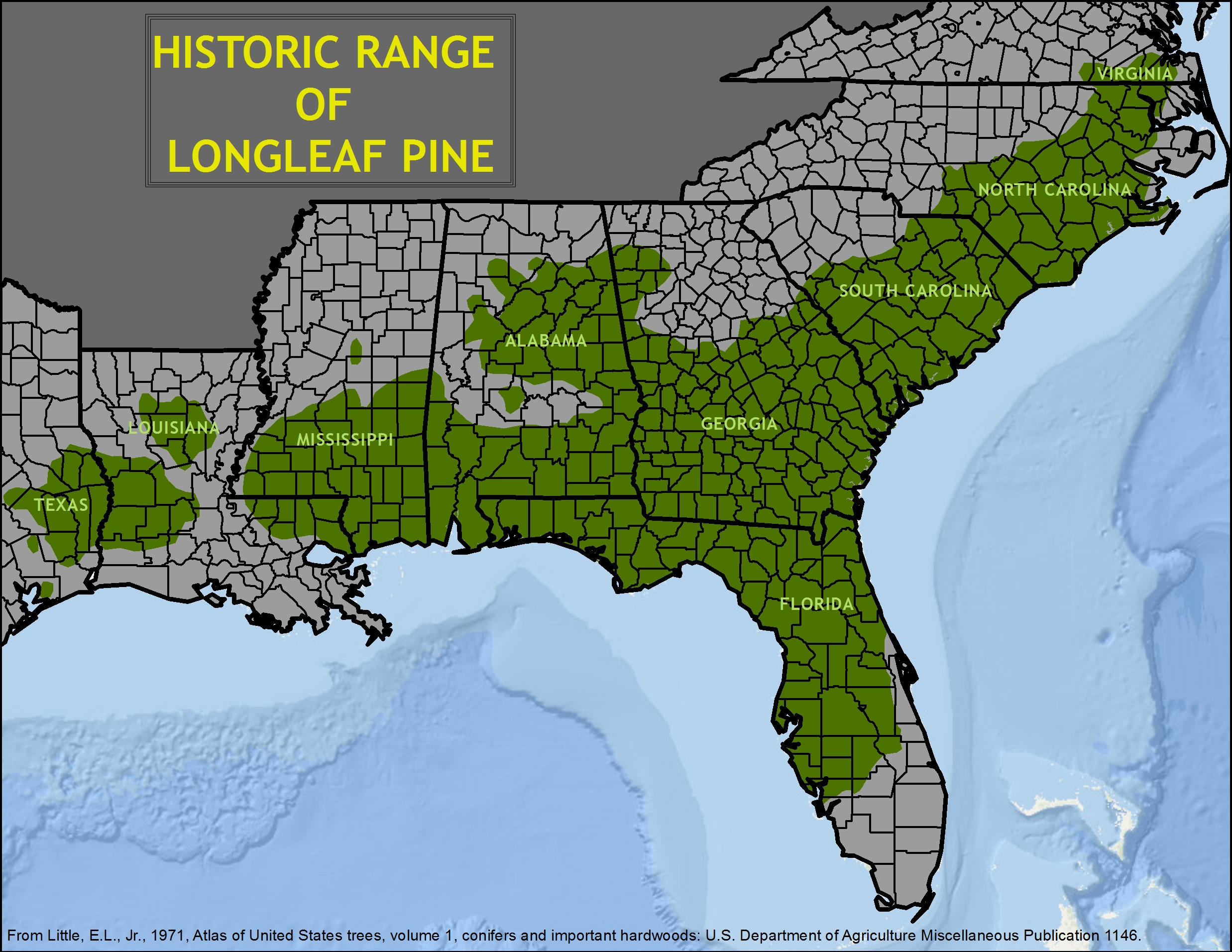 Historic range of longleaf forests across the South Eastern US